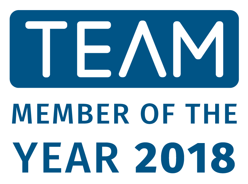 Team - member of the year